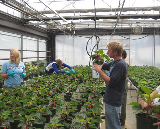 Photo G.R. Paine Horitucultural Centre plants being watered in green house
