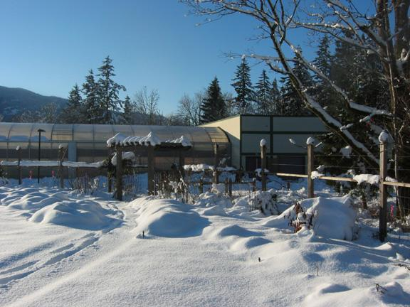 Photo of Adeline Hawken Memorial Garden in winter