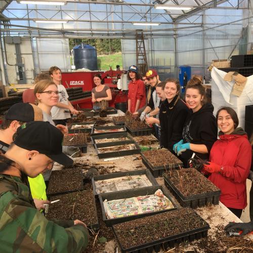 VIU Horticulture, Horticulture Students, Green Thumb Nurseries, Plants