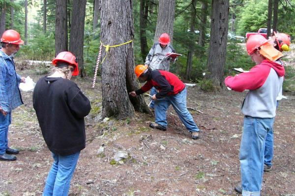VIU Trades Fundamentals of Forest Harvesting Practices